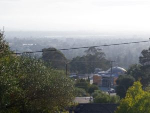 My Neighborhood- View