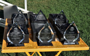 The Townie Awards on display