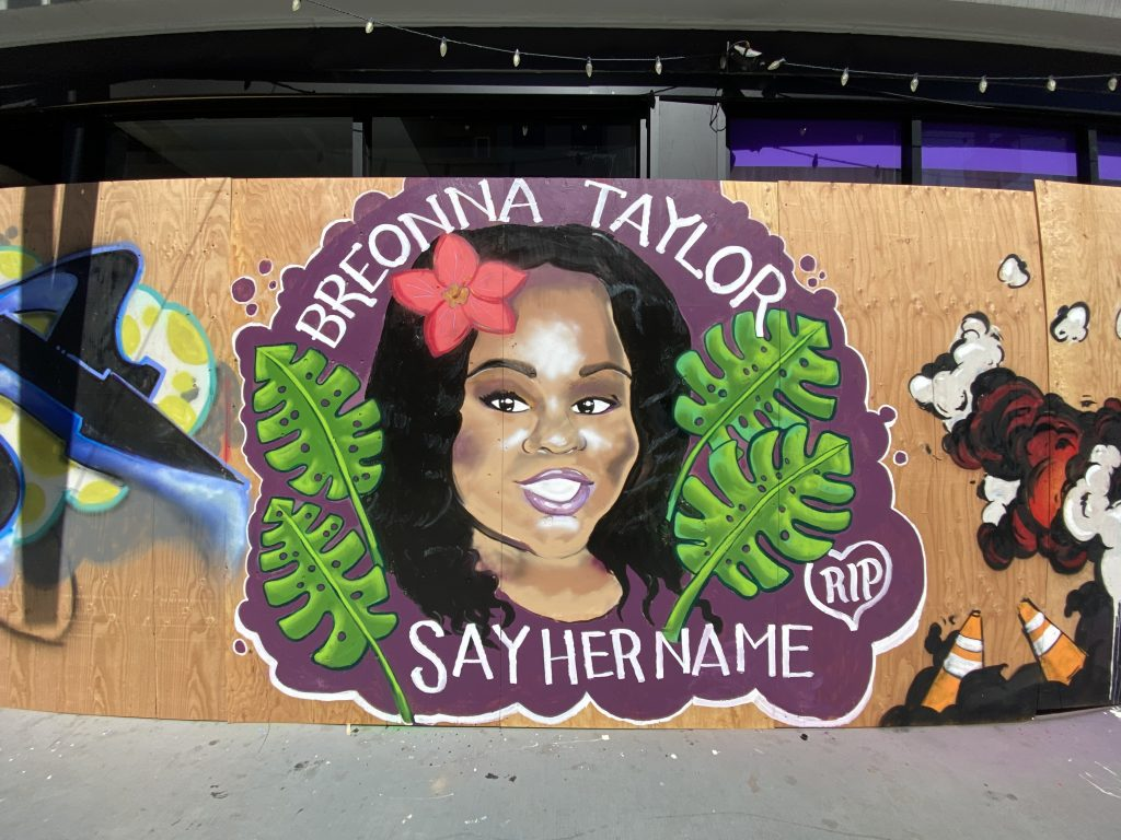 "An image of a smiling Black woman with flowers and leaves surrounding her. The words say ""Breonna Taylor Say Her Name."""