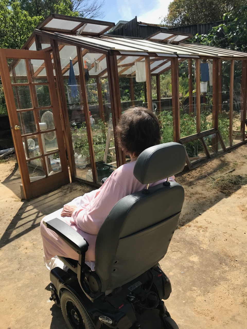 An image of a woman in a wheelchair looking at her garden.